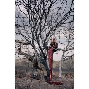 Photography from Franco Duran - Dios de fuego
