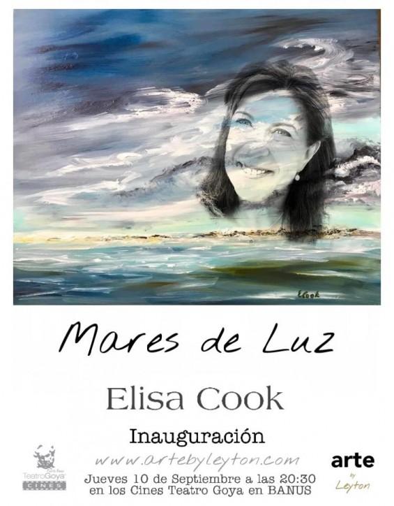 Elisa Cook - Art Gallery